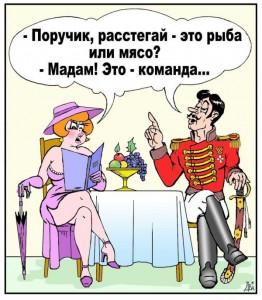 blog.kp.ru